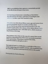 Description of the Exhibition